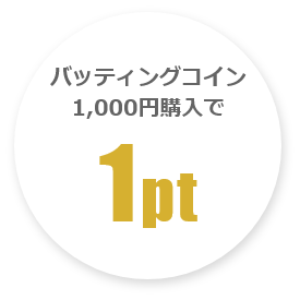 バッティングコイン1000円購入で1ポイント